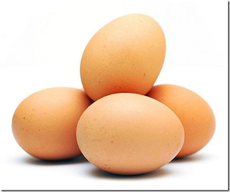 Propiedades del huevo y conservacion